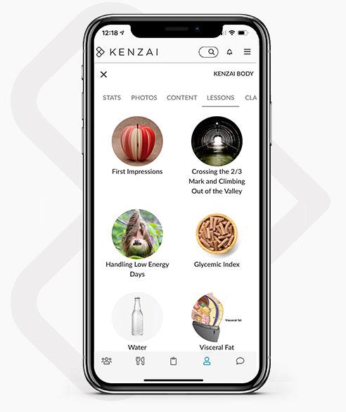 Kenzai app lessons